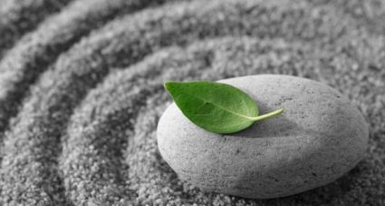 A rock and leaf lying in sand circles